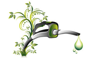 Bio Fuel Pump